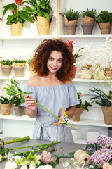 Professional florist. Nice professional florist cutting the flower while standing near the table