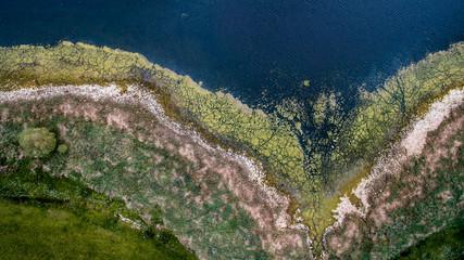 Vue aérienne d'une rive du Layon, par drone