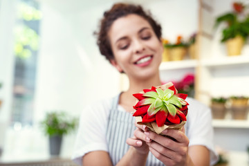 Interesting plant. Selective focus of a beautiful houseplant being in hands of a positive cheerful woman