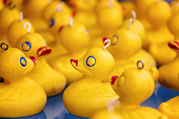 Yellow Plastic Duck Game On Sideshow Alley