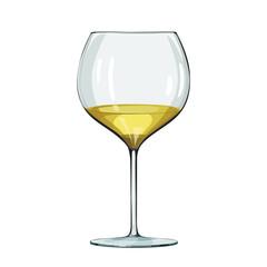 Glass of white wine. Vector illustration on white.