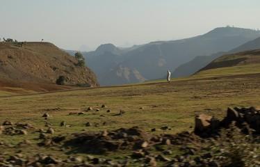 Ethiopie - Montagne Siemen