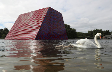 A swan and cygnets paddle in front of Christo's work The London Mastaba, on the Serpentine in Hyde Park, London