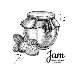 Strawberry jam glass jar vector drawing.  Fruit Jelly and marmal