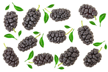 Mulberry berry with leaf isolated on white background. Top view. Flat lay