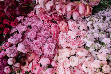 Beautiful fresh blossoming flower bed and texture in pink colors with roses, carnations, ranunculus, orchids, mattiola, peonies, top view, flat lay