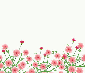 Beautiful flowers frame over white background vector illustration graphic design