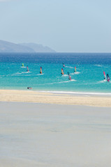 windsurfers in the ocean