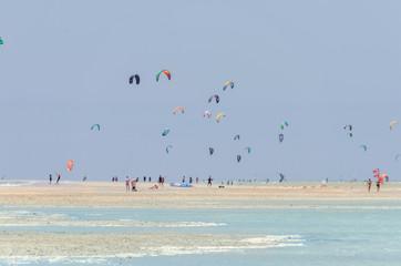 kites in the lagoon