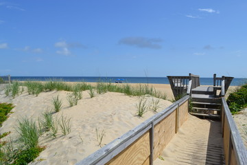 looking towards the Atlantic Ocean from a walkway in Kill Devil Hills, NC- Outer Banks
