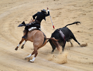 bullfight in spain with horse in bullring