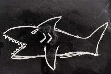 CHalk hand drawing as shark shape on black board background