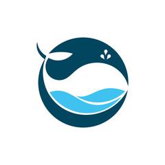 Circle Ocean Big Whale Fish