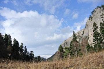 winter in the mountains, mountains, rocks, winter nature, clouds, sky, winter forest