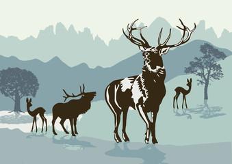 Hirsche in den Bergen