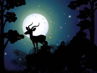 A Silhouette Deer Nigh