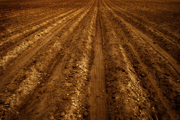 Freshly Plowed Farm Field for Agriculture