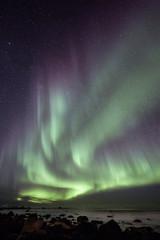Polarlicher in Norwegen, Nordlichter auf Lofoten Abenteuer Urlaub im Winter
