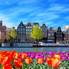 Foto op Plexiglas Amsterdam One of canals in Amsterdam with colored tulip flowers
