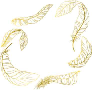 White carnival background with gold feathers.