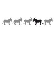 anders be different esel pferd pony klein packesel lange ohren bauernhof reiten reiter silhouette schwarz umriss