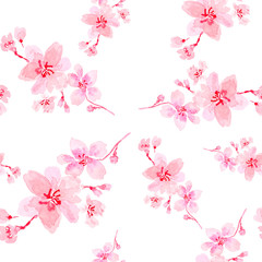 Pink cherry blossom seamless pattern on white background