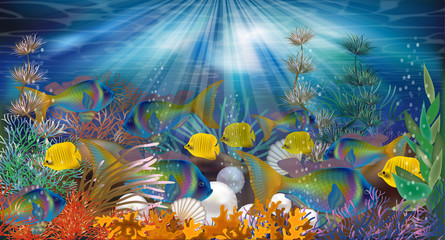 Underwater wallpaper with pearls and tropical fish, vector illustration