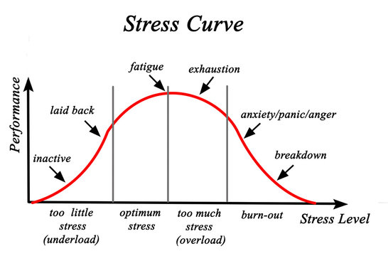 Stress and Performance Curve.