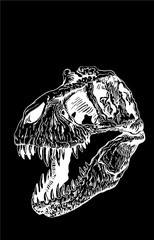 Graphical skull isolated on black background,vector tyrannosaurus  for tattoo and printing
