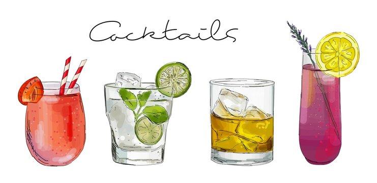 Hand drawn illustration of set of cocktails.