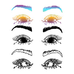 Female Eyes and Eyebrows. Beauty Industry Design Elements Vector Illustration. Idea for business visit card, typography vector.