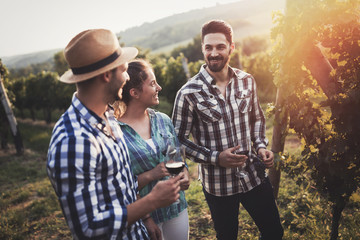 Photo sur Aluminium Vignoble People sampling and tasting wines in vineyard