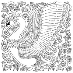 Hand drawn decorated swan.  Image for adult coloring books, pages