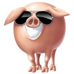 Fototapete - maiale con occhiali da sole