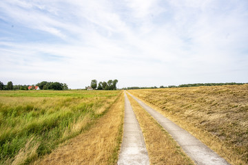 Ostsee genießen auf dem Darß Fotoväggar