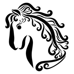 Beautiful horse with a curving mane, profile, black curls