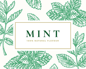 Hand Drawn Mint Illustration Card. Abstract Vector Mint Branches and Leaves Sketch Background with Classy Retro Typography.