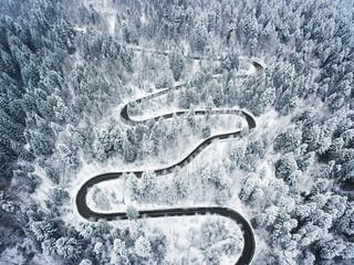 Foto auf AluDibond Grau Winding road trough the forest in the winter
