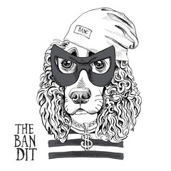 Portrait of a funny Spaniel in a Bandit mask, Knitted Cap, striped black and white t-shirt with dollar pendant . Vector illustration.