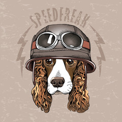 Portrait of a Spaniel dog in a retro biker Helmet. Vector illustration.