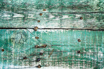 Vintage background of old boards painted in green