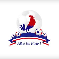 Allez les Bleus équipe de France de Football