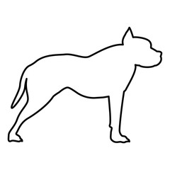 Pit bull terrier icon black color illustration flat style simple image