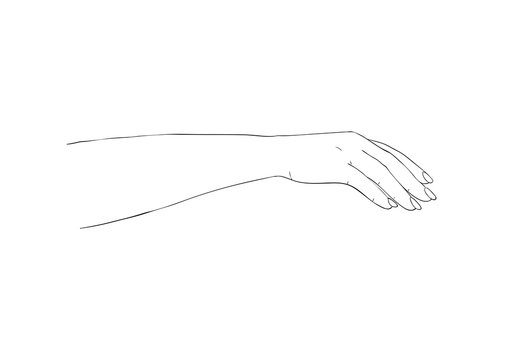Salon procedure of manicure. Elegant arm of a woman. Ilustration for cosmetic for hands - cream or lotion.