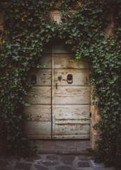 Door Under Ivy in Italy