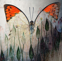 a grunge butterfly wallpaper texture