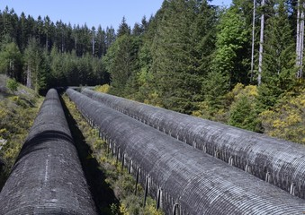 historic wooden penstocks at John Hart Dam, three large over land water pipelines in a forest area, Elk Falls Campbell River;  Vancouver Island BC Canada