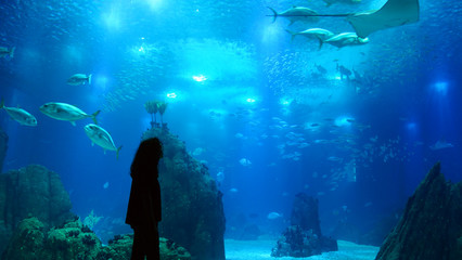 Silhouette of a woman in an aquarium