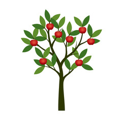 Green summer Tree with red apple. Vector Illustration.
