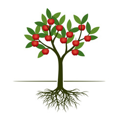 Green summer Tree with red apple and root. Vector Illustration.